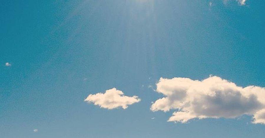 77/365 ⛅ cielo azul Igersalbacete Igersclm Igersspain 365cosasquehacerenalbacete Tualbacete Somosinstagramers Igers 365project 365project 365project2016 365days 365 Proyecto365 Proyecto365aniswit @366challenge 365photochallenge 3lentescom Proyecto365fotografia