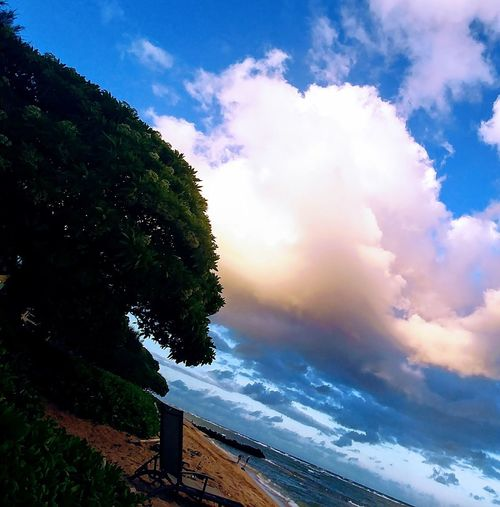 Speechless Carefree Cloud Art No Filter Communication Divinity Of Nature Thank You WOW Do You See What I See? Cloud Speak Sky Cloud - Sky Beauty In Nature Plant Tree Water Tranquility Scenics - Nature Idyllic Sea