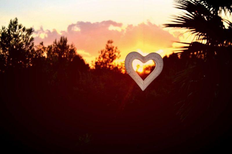 Heart shape on tree against sky