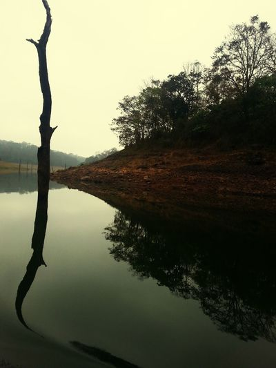 The Periyar Lake a Beautiful Natural experience. Very Reflective surrounded by Shadows throughout and then get lucky to see a heard of wild elephants :) TheWeekOnEyeEM Shadow Water Reflections Creative Light And Shadow Reflection Flipit Justflipit Frame It!