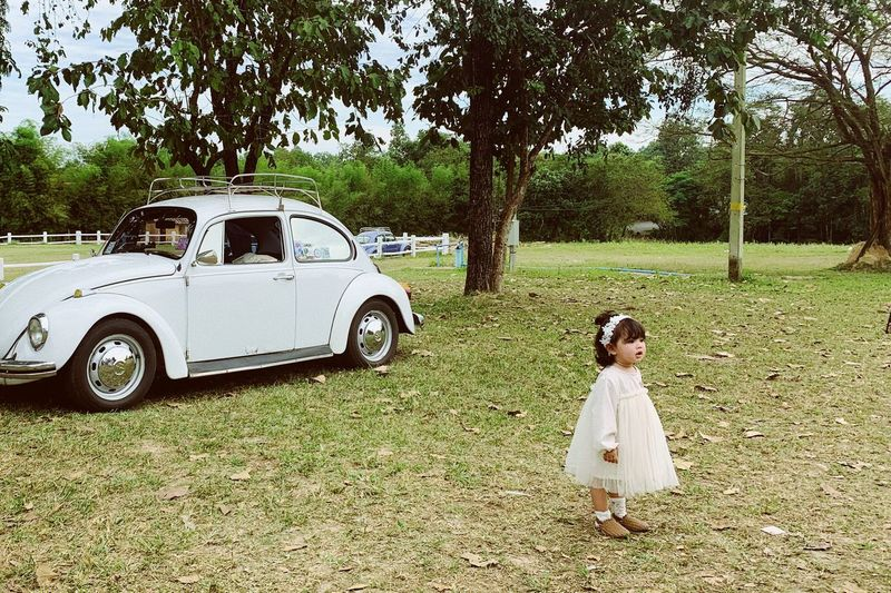 Chiangmai PhonePhotography Kids Tree Plant Car Real People Childhood Child Outdoors One Person