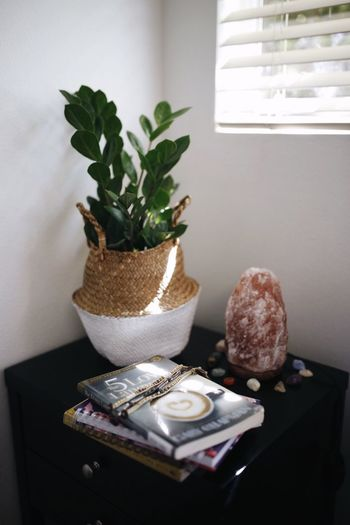Table Indoors  Plant Home Interior No People Potted Plant Food Food And Drink Close-up Container Publication Plate Day Vase Cutting Board Window Houseplant Nature Still Life Freshness