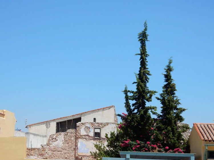 Sunny Tree Day Architecture Built Structure Building Exterior Outdoors Sunlight No People Blue Clear Sky Sky Athens Athens, Greece Athens City Greece Griechenland Athen Greek Nature City Architecture Tree Town