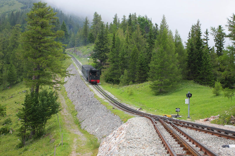 Cogged railway going uphill on mountain Cog Cogwheel Curve Day Mountain Mountains Nature Non-urban Scene Outdoors Pine Rail Transportation Railroad Track Scenics Schneeberg Steam Locomotive Train Track Tranquil Scene Transportation Travel Tree Uphill