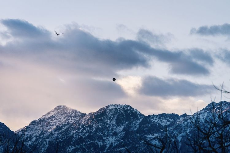 Birds flying over snowcapped mountains against sky
