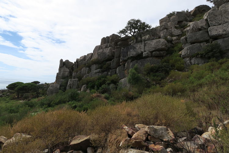 Low angle view of rock formation amidst trees against sky