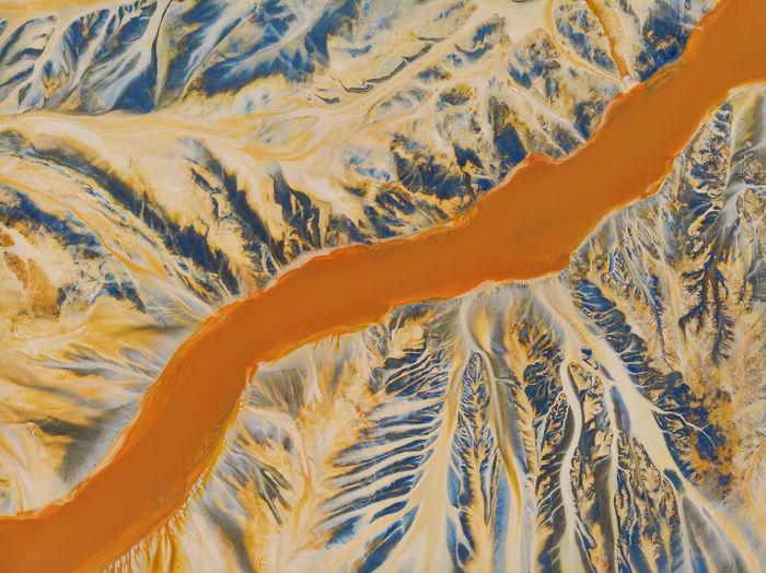 High angle view of orange swimming in sea