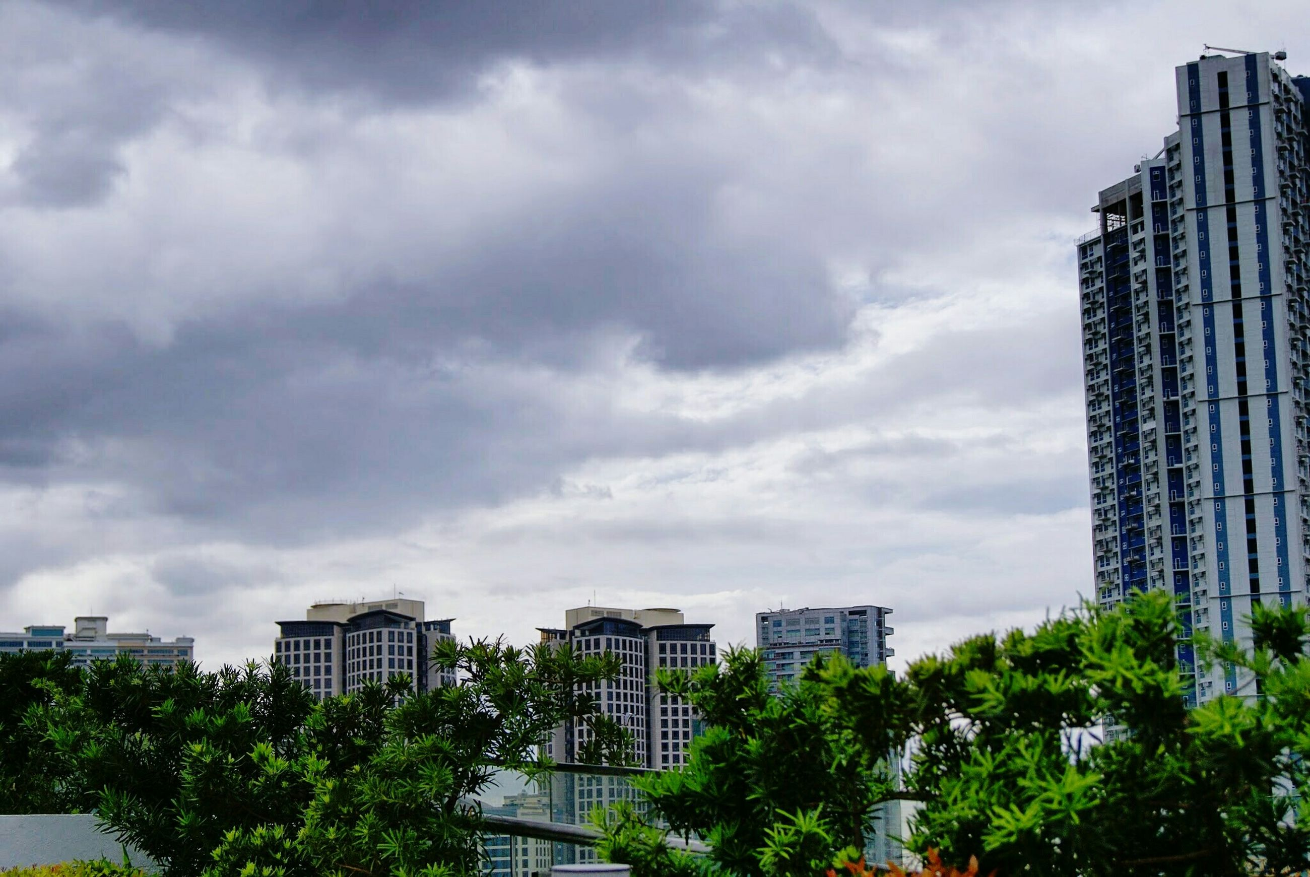 building exterior, architecture, built structure, city, sky, tree, cloud - sky, cloudy, skyscraper, modern, office building, building, low angle view, tall - high, residential building, cloud, cityscape, city life, residential structure, tower