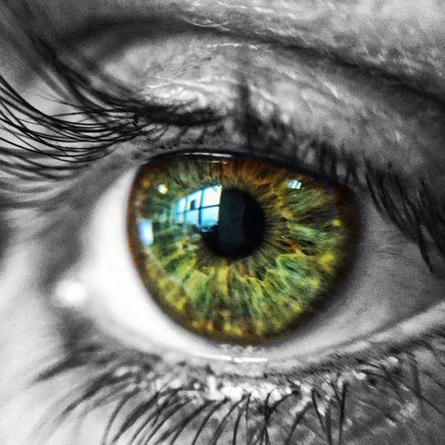 Close Up Technology Human Eye
