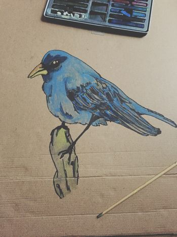 Painting Mine Birds ArtWork Colours Sketch Escaping