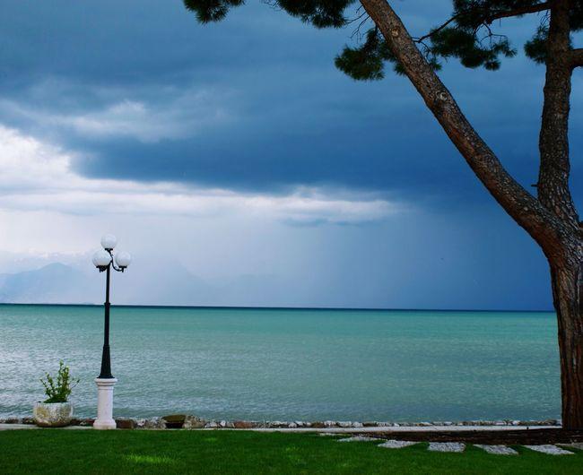Lake Dark Sky