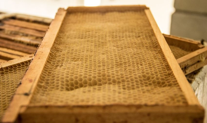 Bees Honey Production Food Honeycomb Indoors  No People High Angle View Still Life