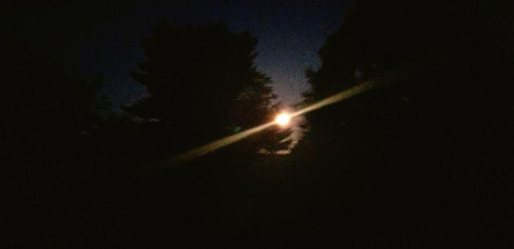 moon light Moon