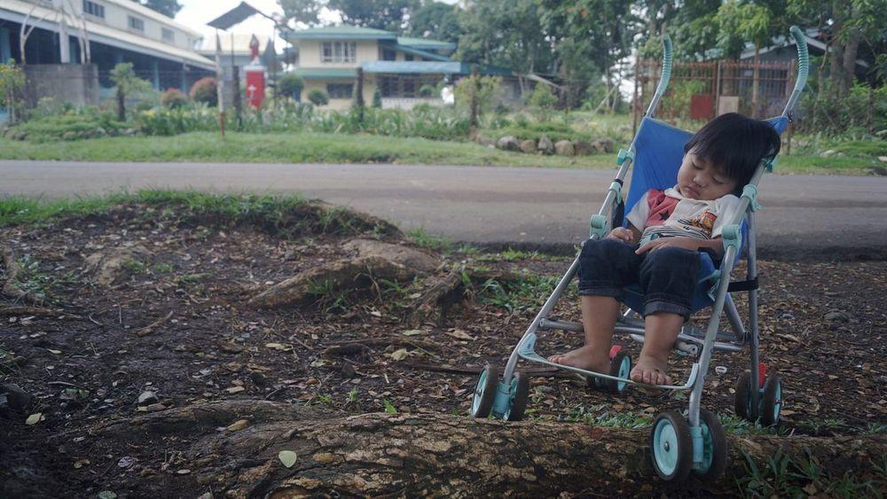 Baby Sleeping Peace Solitude Baby Stroller