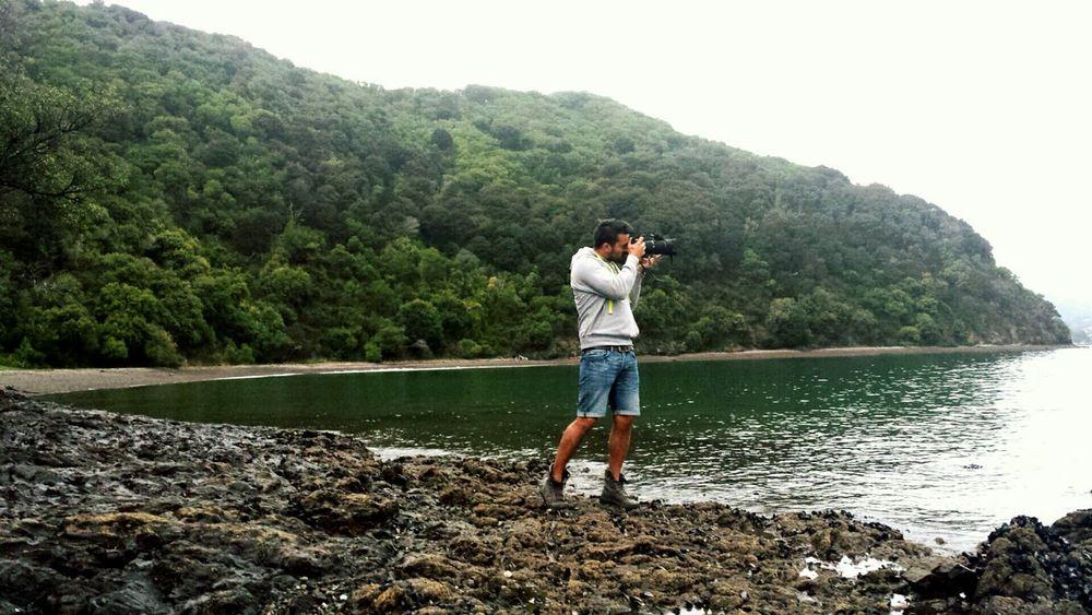 Shooting Photos Picton  Beautiful Nature Self Portrait New Zealand Traveling Southisland