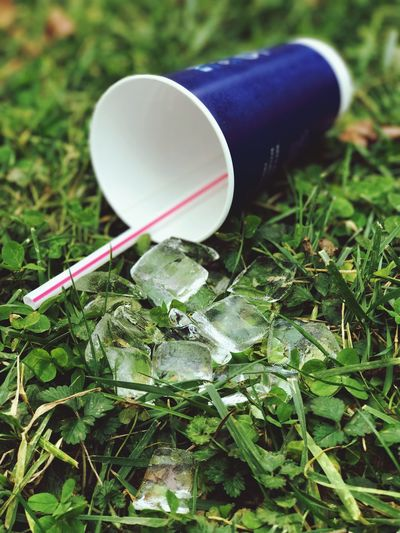Oops spilled drink No People Green Color Close-up Grass Day Outdoors Freshness Empty Cup Ground Level View Melted Ice Ice Cubes Trash On The Ground Pick Up Your Trash Trash Spilled Drink Ice Straw Drink Cup Fast Food