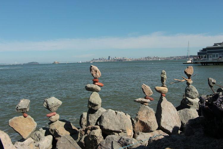Ducks on rock by sea against sky