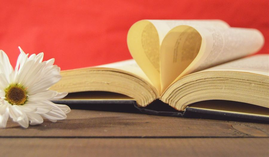 Close-up of book with heart shaped pages and white daisy flower