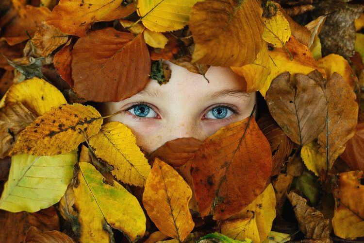 Cropped portrait of woman amidst autumn leaves