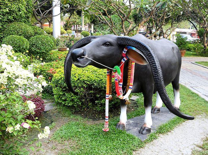 No People One Animal Outdoors Statue Tree Wat Rai Khing Nakhon Pathom วัดไรขิง นครปฐม