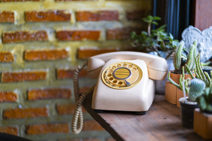 Old vintage telephone, garden background. Antique Business Classic Communicate LINE Office Retro Service Aged Background Communication Concept Contact Handset Indoors  Number Old Phone Plant Rotary Table Talk Telecommunication Telephone Vintage