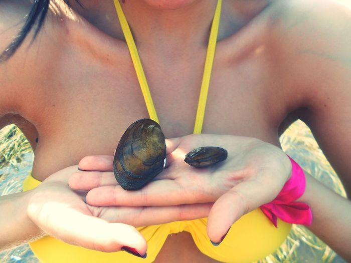 Midsection of woman holding mussels at beach