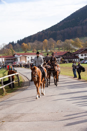 Hundham, Bavaria - November 4, 2017: Every year on the 1st Saturday in November the Idyllic Horse procession, named Leonhardi in the Bavarian Hundham takes place in memory of Patron St. Leonhard. In traditional clothing and decorated horse-drawn carriages horses and riders move to the church of St. Leonhard Bavaria Hundham Leonhard Ride Leonhardi Adult Day Domestic Animals Horse Horse Draw Vehicles Horse Procession Horseback Riding Idyllic Leather Trousers Livestock Mammal Medium Group Of People Men Nature Outdoors People Real People Riders Sky Tree Women