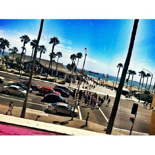 Beach living Huntingtonbeach PalmsTreesForDayz CaliLivin California westCoast WestSide WestToEast