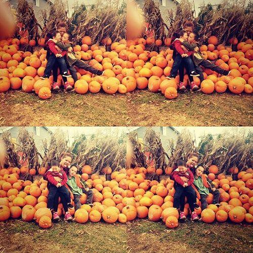 Family SundayFunday Pumpkinpicking Fallweather October2015 Mychildren Mylife PreciousMoments