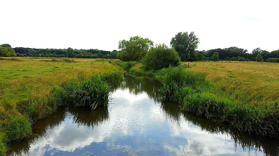 Water Tranquil Scene Scenics Tranquility Grass Field Green Color Growth Reflection Nature Beauty In Nature Plant Non-urban Scene Day Waterfront Stream Sky Outdoors Rural Scene Agriculture