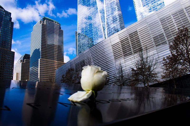 9/11 memorial, with a white rose 9/11 Memorial White Rose Respect The Photojournalist - 2017 EyeEm Awards EyeEm Selects An Eye For Travel