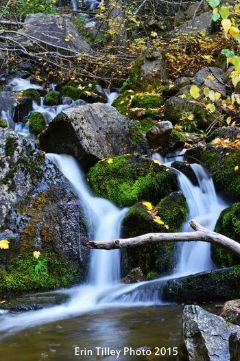 Naramata Water Fall Colors Creek