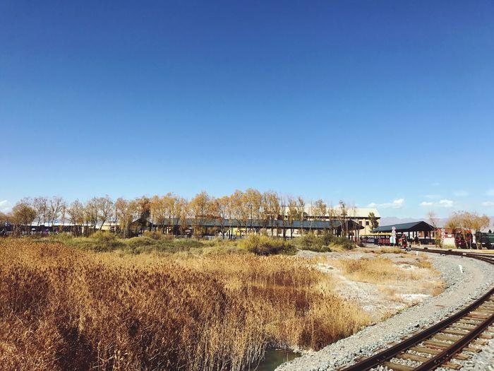 Railroad tracks on field against clear blue sky