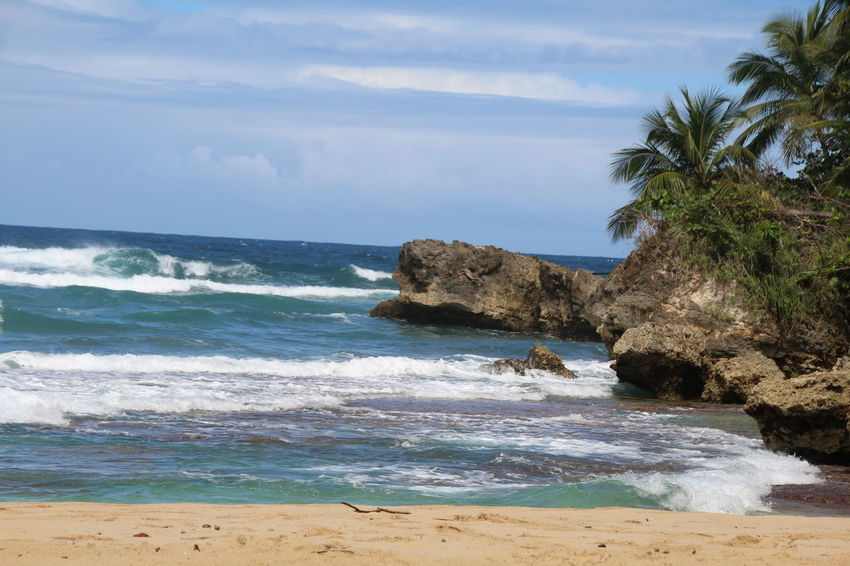 Dominican Republic Playa Grande Beach Beauty In Nature Day Horizon Over Water Nature No People Outdoors Sand Scenery Scenics Sea Sky Tranquility Tree Water Wave