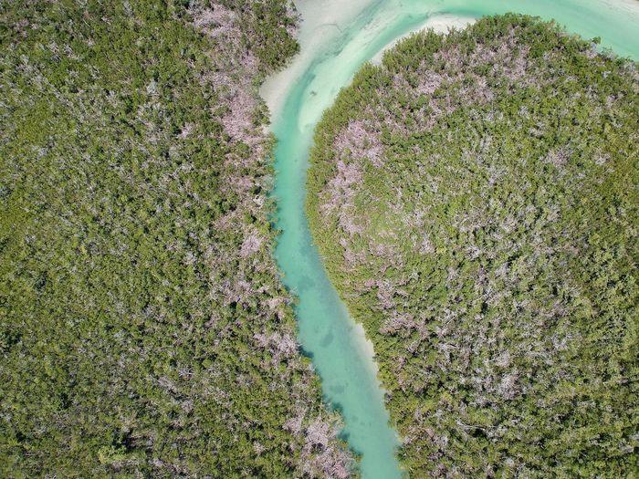 10,000 Islands