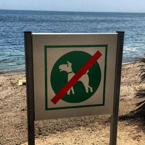 """I perquè no """"prohibit nens que criden"""", o """"llençar deixalles és pena de presó"""", o... Sempre gossos no, Cabrons Vahomeva Fart Etfelicitofill"""
