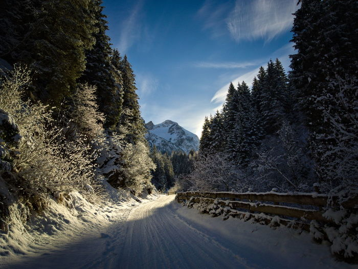 Cold Temperature Tree Snow Plant Mountain Winter Road Nature Beauty In Nature Scenics - Nature No People Sky Tranquility Transportation Tranquil Scene Direction The Way Forward Cloud - Sky Day Mountain Range Outdoors Snowcapped Mountain Pine Tree Crash Barrier