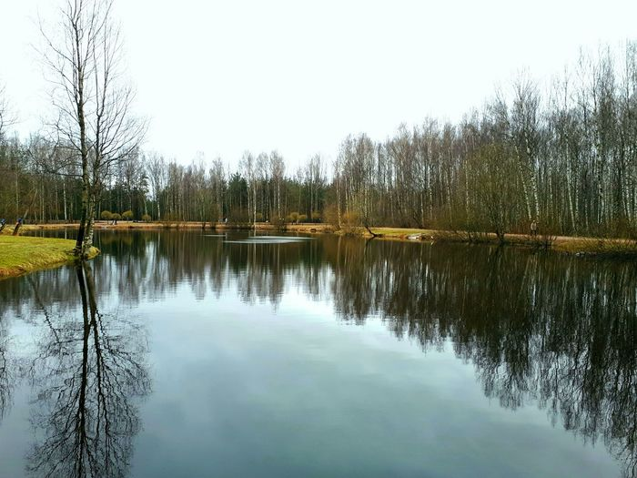 Reflection Water Tree Lake Nature Outdoors Beauty In Nature No People Day Clear Sky Soft Relax Tranquility Silence River Spring Cold Days Traveling Forest Countryside The Great Outdoors - 2017 EyeEm Awards
