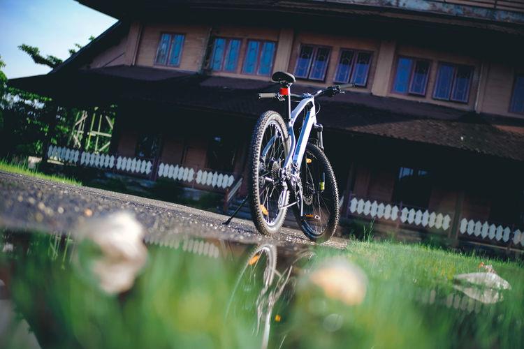 Bike to nature