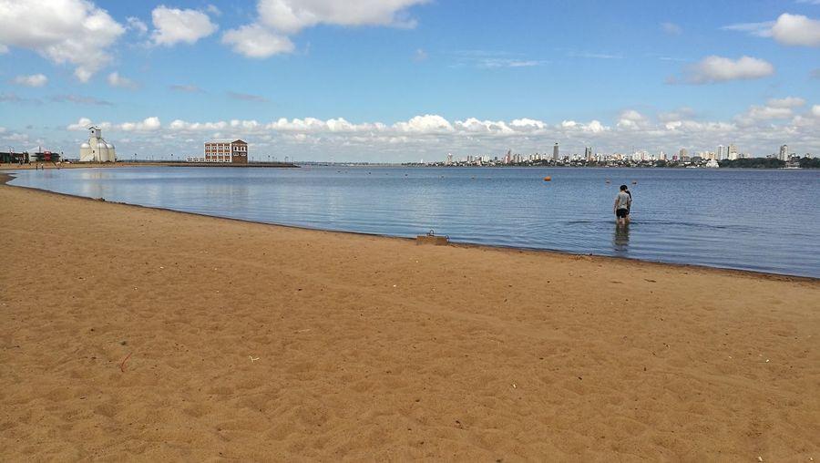 Water Sea Beach Bird Sand Full Length Wave Summer Swimming Blue