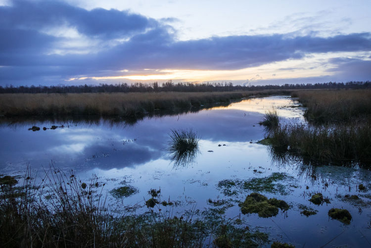 Beauty In Nature Blue Hour Blue Sky Cloud - Sky Dawn Day Grass Lake Moor  Moorland Nature No People Outdoors Reflection Reflection Lake Scenics Sky Sunrise Sunrise And Clouds Tranquil Scene Tranquility Tranquility Water