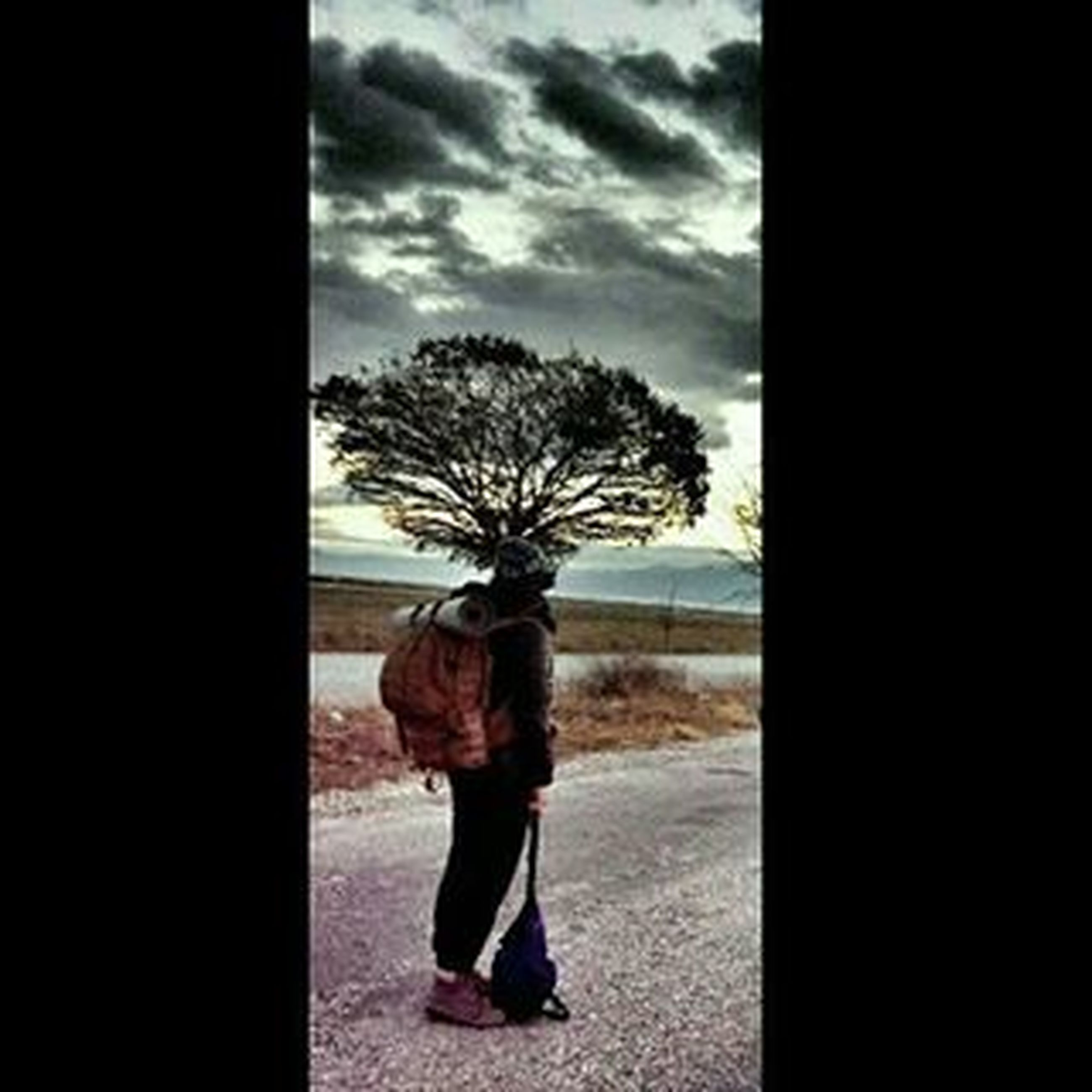tree, rear view, sky, full length, standing, silhouette, lifestyles, leisure activity, tranquility, solitude, person, cloud - sky, nature, tranquil scene, day, indoors, men, field