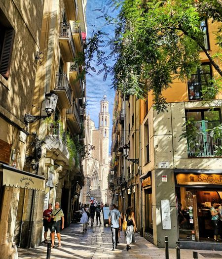 Barcelona City Tree Men Women Walking Architecture Building Exterior Built Structure Street Scene City Location Old Town TOWNSCAPE Town