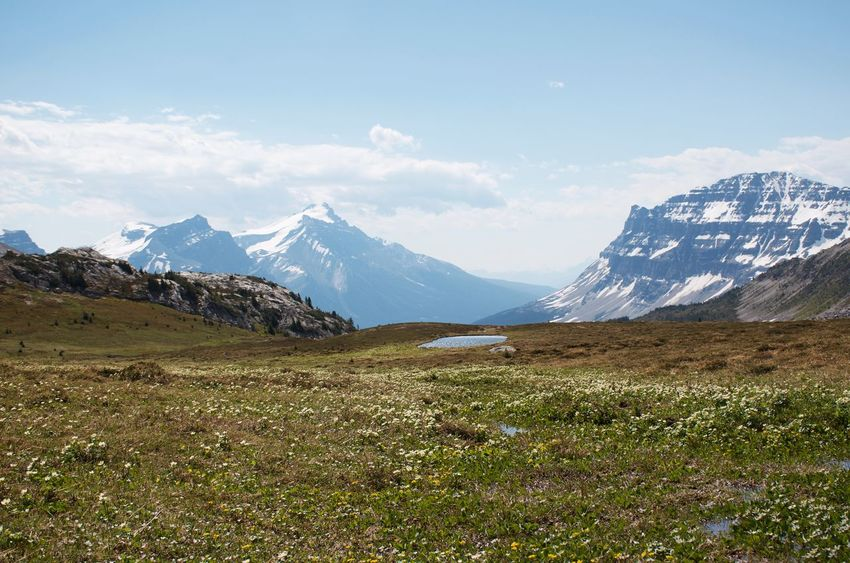 Breathtaking Canadian Rockies  Hiking Travel Adventure Destination Landscape Mountain Mountain Peak Mountain Range No People No People Outdoors Outdoors Prairie Snowcapped Mountain Wilderness My Best Travel Photo