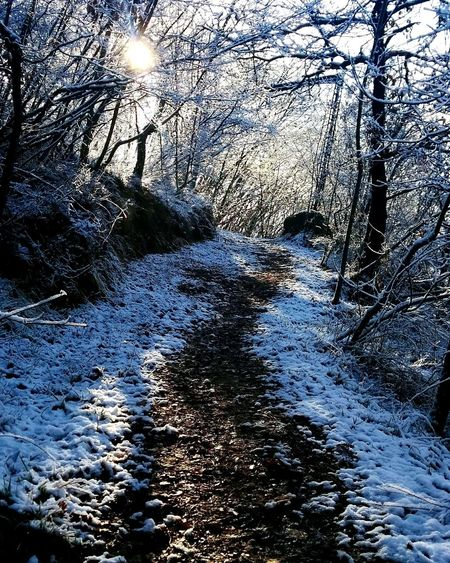 Soft path. Full Frame Day Backgrounds Water No People Nature Sunlight Cold Temperature Beauty In Nature Winter Outdoors