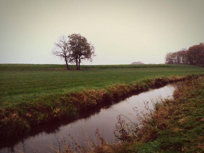 Vintage River