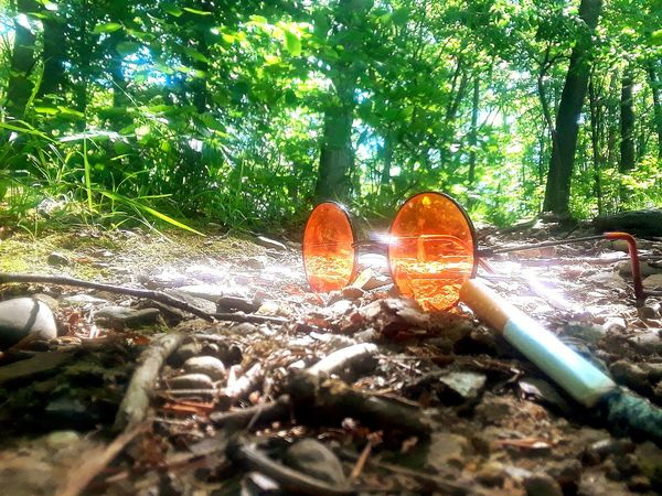 No People Outdoors Nature Day Forest Relaxation Ohio Leisure Activity Mohican Tranquility Low Angle View Self Portrait