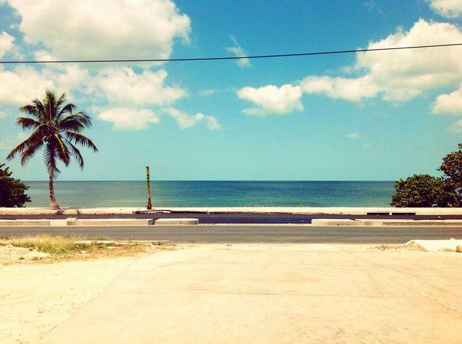 En la Polinesia Meridional.