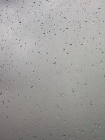 Another beautiful rainy day. Rain Hello World