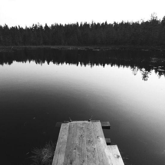 Backgrounds Bathing Blackandwhite Freedom Lake Nature Pierce Quadrate Swamp Water